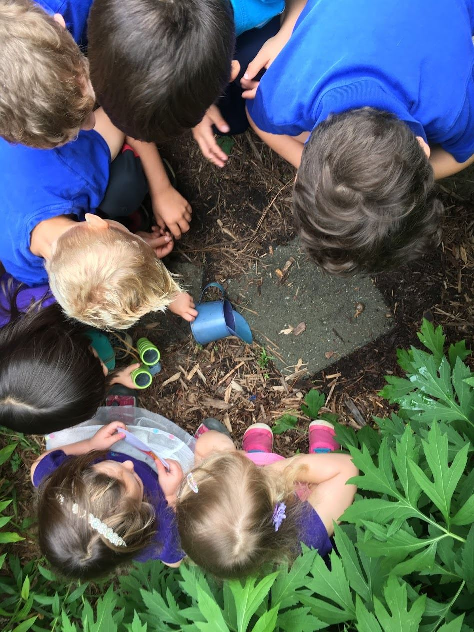 seven students huddled in a circle regarding the soil. four boys in blue shirts and three girls in purple shirts.
