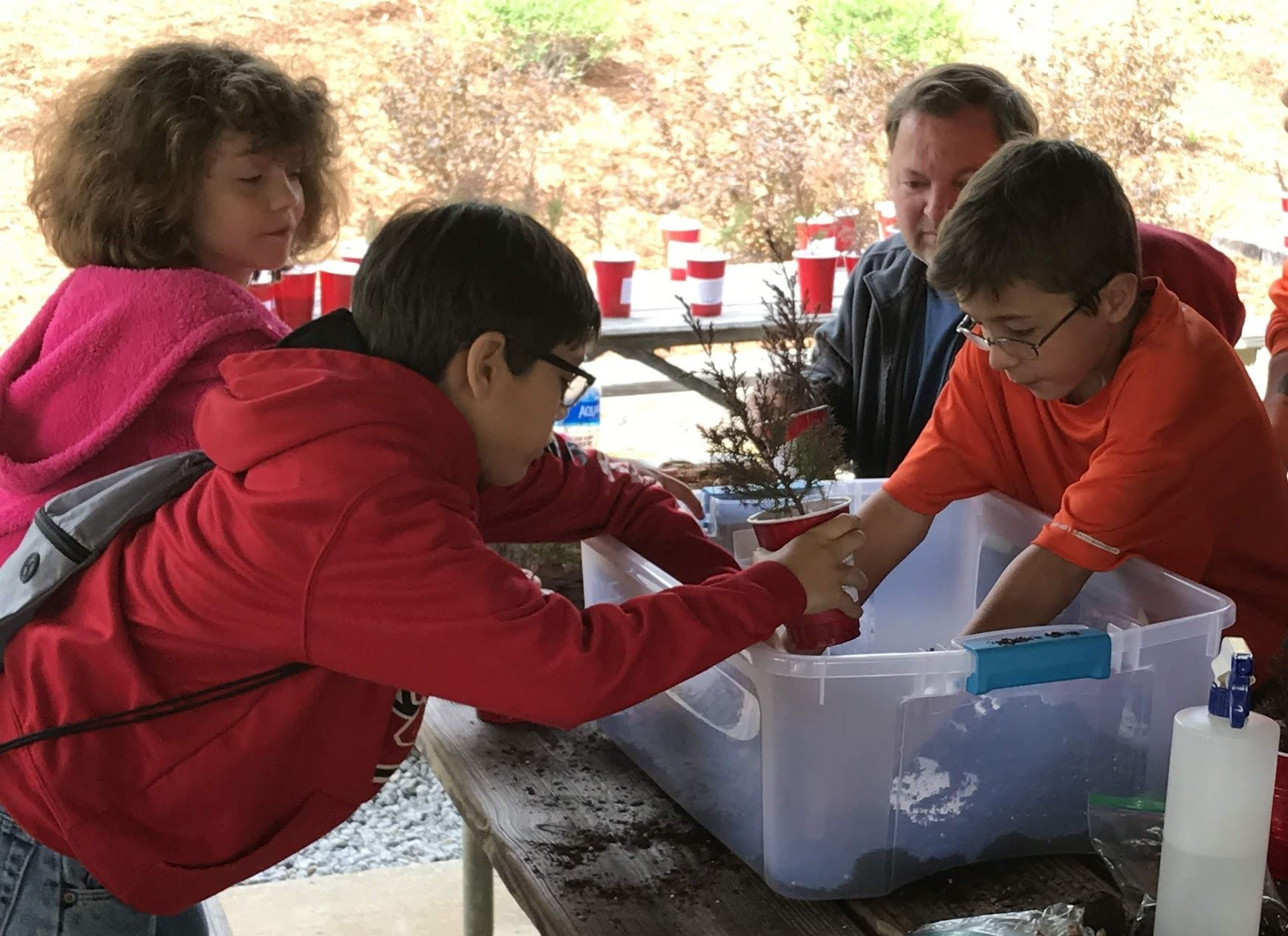 three students surrounding a clear storage bin filled with soil. female student is wearing a pink sweatshirt and two male students are wearing red. one students has a tree selling in a red soil cup and is filling it with soil. bin is on a picnic table. adult male in the background in grey zip up sweatshirt.